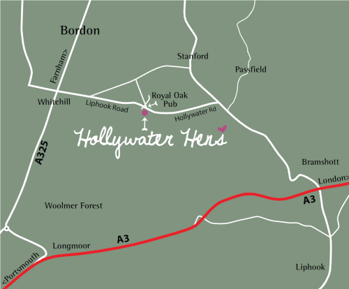 Hollywater Hens - Location
