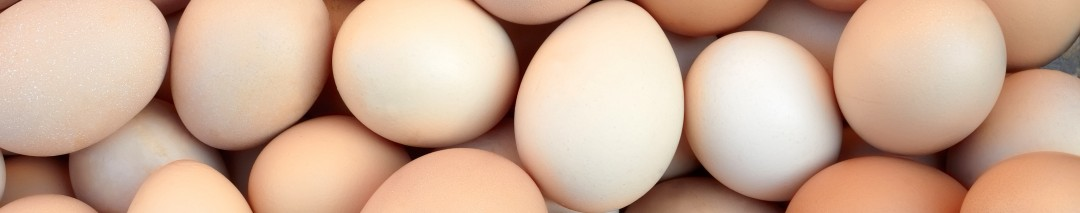 Get fresh eggs daily when you keep your own chickens