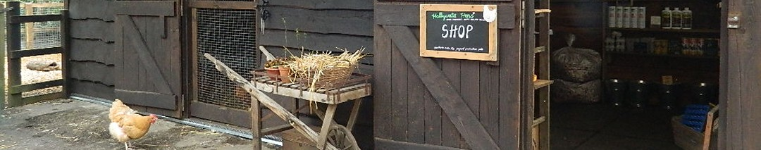 Chickens for sale in the shop at Hollywater Hens in Hampshire