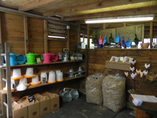 Hollywater Hens shop - interior