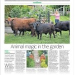animal magic article from newspaper
