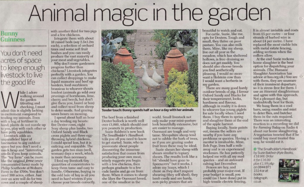 "The Smallholders Handbook in an article ""Animal magic in the garden"""