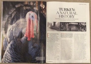 Poultry expert Suzie Baldwin writes in BBC Countryfile magazine