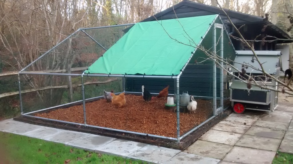 Simple Chicken Coop Design