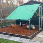 hen house - chicken coop - chicken run