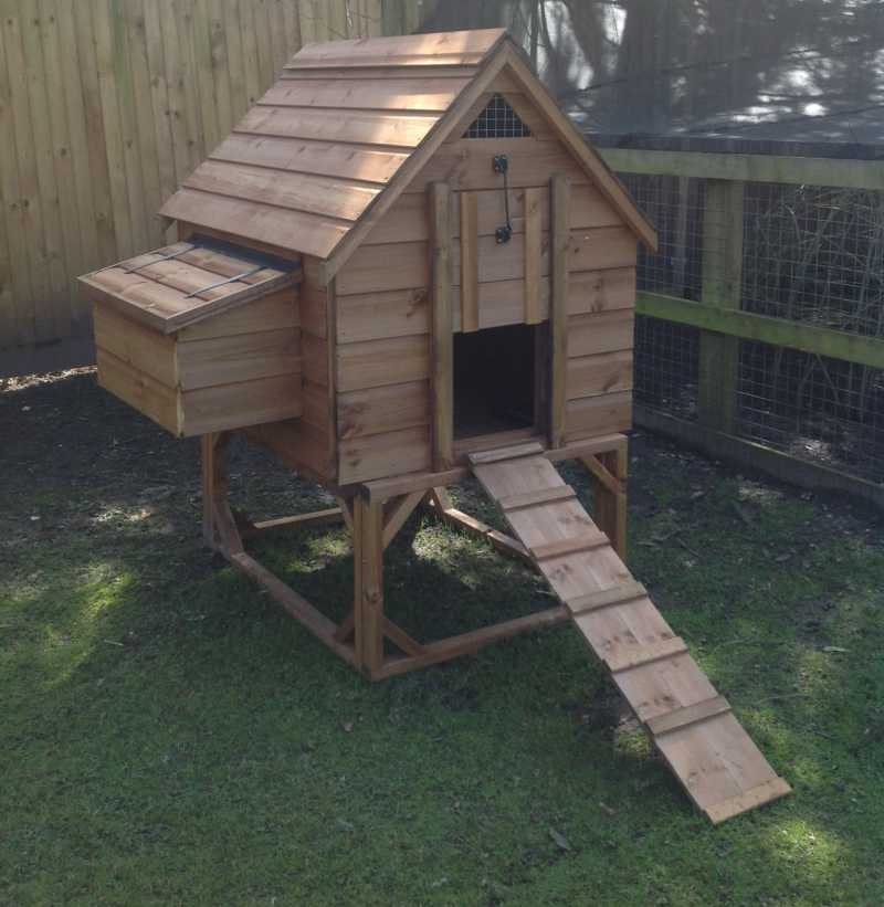 Large Chicken House with base