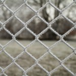 frosted fence