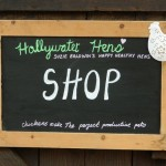 Hollywater Hens Shop Sign