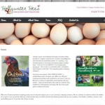 Hollywater Hens website
