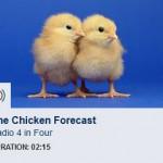 The Chicken Forecast