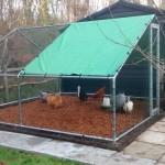 hen house - chicken coop - chicken run